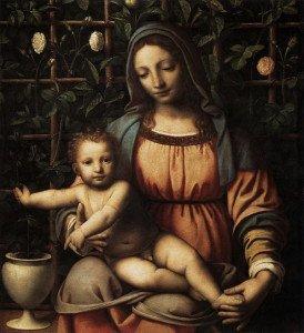 Bernardino Luini - Madonna del roseto