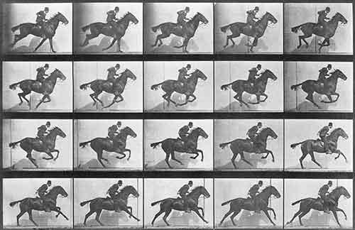 Eadweard Muybridge, The Horse in motion - Serie di 24 fotografie che ritraggono il galoppo di un cavallo